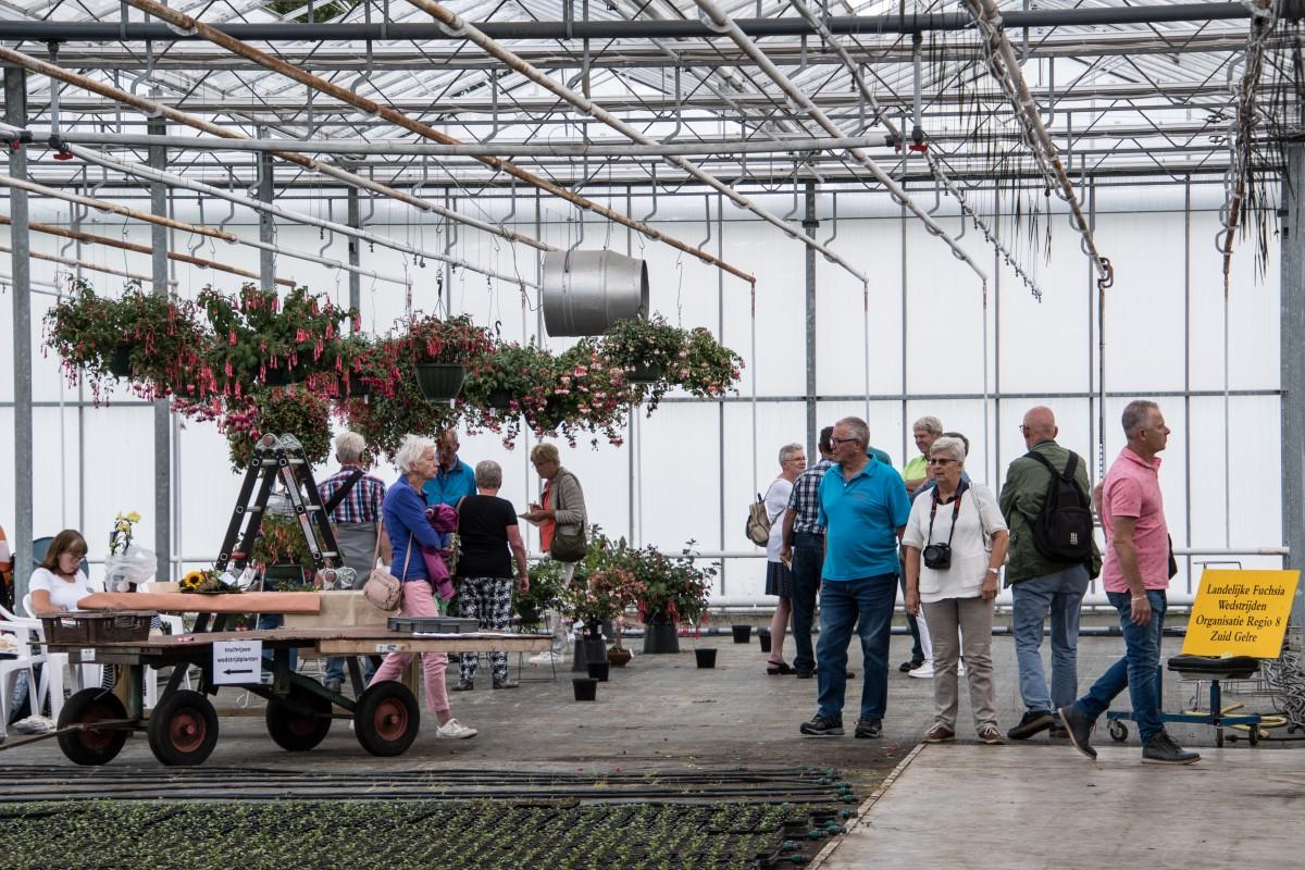Vriendendag 2018-80 Wedstrijdplanten